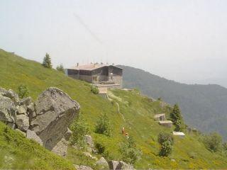 Козя стена (резерват)