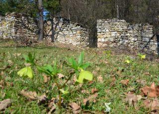 Лиляшка крепост - Чирен