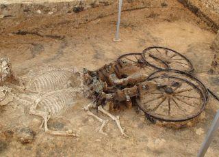 Артефакти от погребение на тракийски аристократ