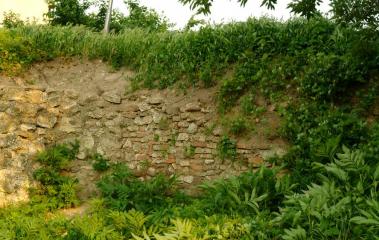 Алмус (крепост)