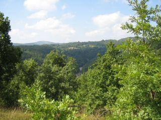 Защитена местност Босна