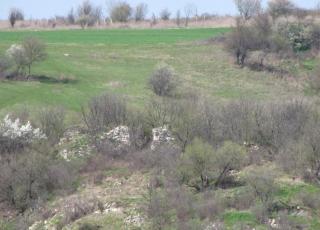 Крепост Големаново кале