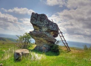 Добровански гъби (скален феномен)