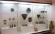 Археологически музей - Бургас thumbnail 2