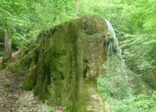Гърбавата чешма (водопад)