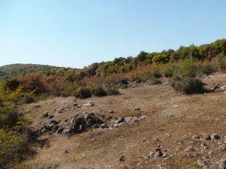 Скална гробница Фурнаджика