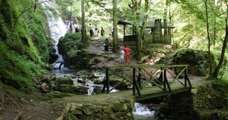 Парк за приключения Адреналин - Тетевен