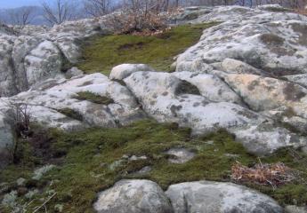 Раюв камък (екопътека)