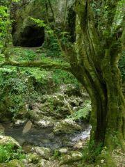 Пещери и извори на река Младежка