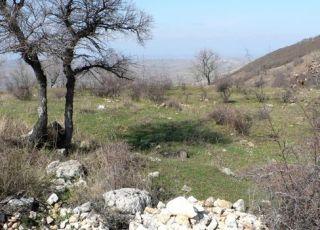 Калето (останки от тракийска крепост)