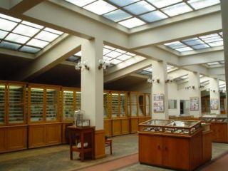 Музей по минералогия, петрология и полезни изкопаеми