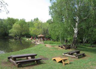 Дендрариум (парк)