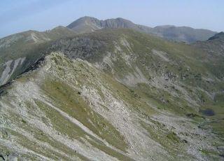 Овчарец (връх)