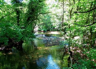 Екопътека Пещери и извори на река Младежка