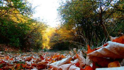 Асенова крепост - Клокотница