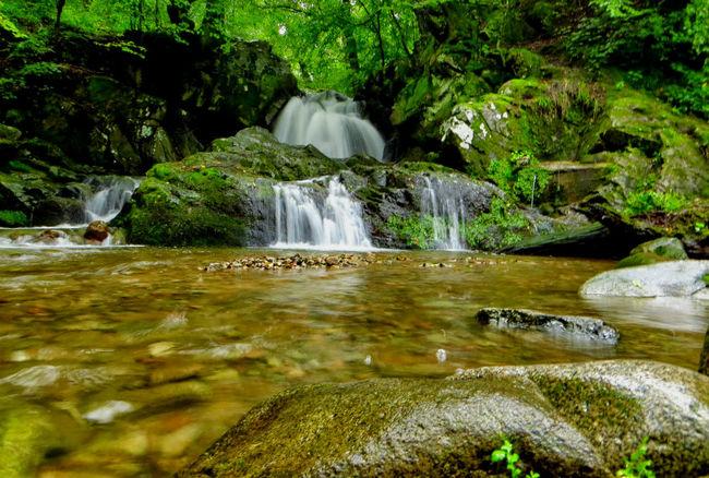 Местност Водопада