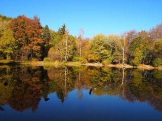 Боянско езеро