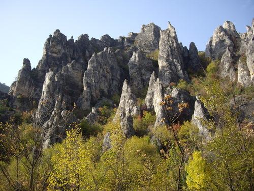 Каньона Шегава