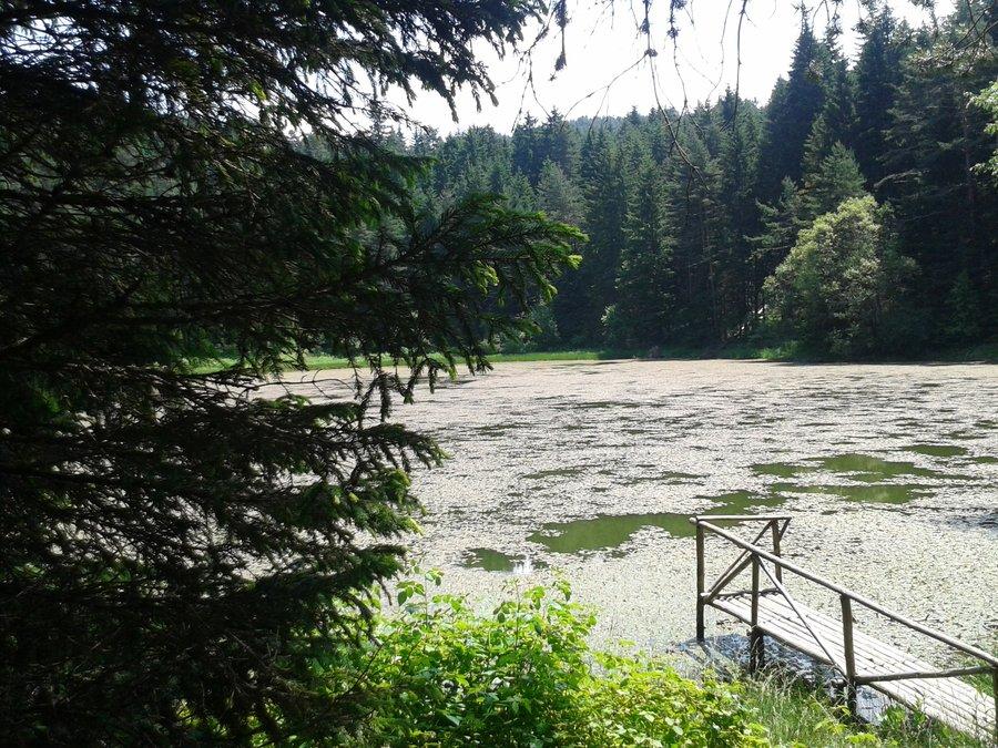 Езеро Паничище